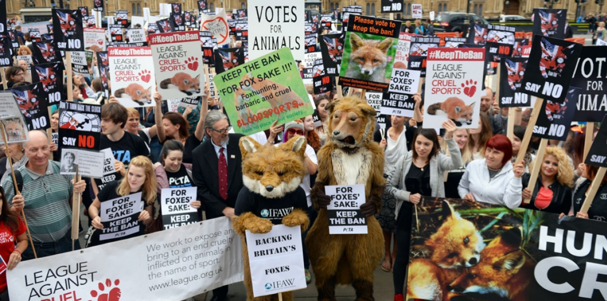 Anti-foxhunting protesters gather outside the Houses of Parliament in London in 2015