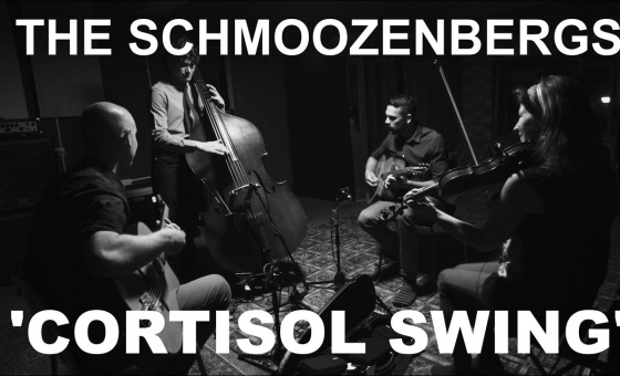 The Schmoozenbergs 'Cortisol Swing'